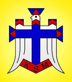 Katolickie Stowarzyszenie Młodzieży. Świadectwo