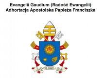 """Franciszek w """"Evangelii gaudium"""": Kościół cieszy się rozwojem nauki"""
