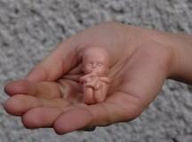 """Zestawy modeli """"Małego Jasia"""" pojechały na Białoruś i na Węgry! Czy podarujemy je także dla ruchu pro-life w Ekwadorze?"""