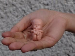 Stanowisko Polskiej Federacji Ruchów Obrony Życia w sprawie dalszych działań na rzecz prawa do życia dla każdego poczętego dziecka i ochrony macierzyństwa