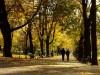 Ulubione modlitwy. Jesienna modlitwa